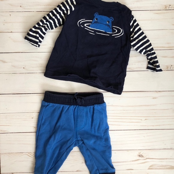 6e8209cfe Gymboree Matching Sets | 36 Month Hippo Outfit Winter | Poshmark
